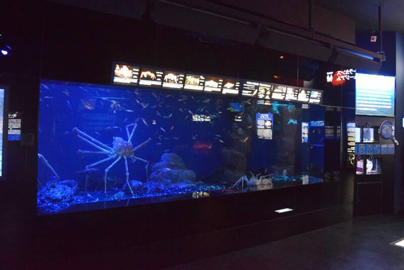 不思議な深海生物だらけの沼津港深海水族館、実はグッズも変で面白い