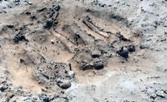 殺人島に葬られた、「難破船バタヴィア号の惨劇」の生存者5人の遺体が ...