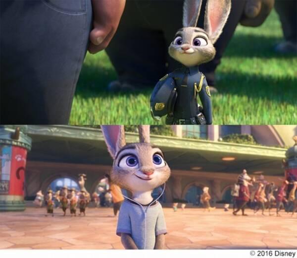 ズートピア夢をかなえた初のウサギ警官 2016年8月19日