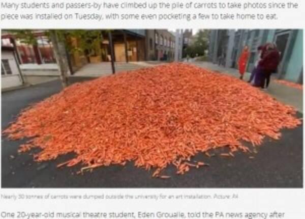 ウサギの学生でもいるの?」大学内に29トンの人参が山積みに(英 ...