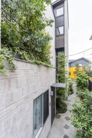 シックで落ち着きのある住空間建築と自然の力で生きる力が高まる