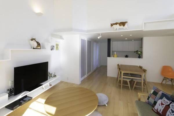 猫たちのお気に入りがいっぱい適度な距離感で住まう大人4人と猫6匹の快適生活