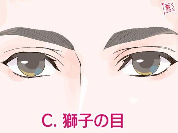 イケメン獅子の目