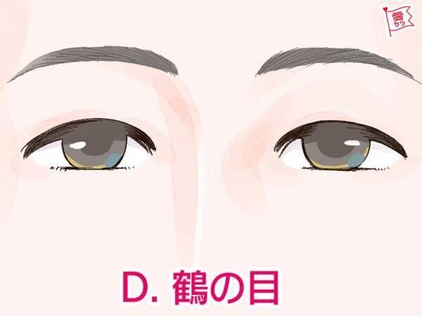 鶴の目、人相