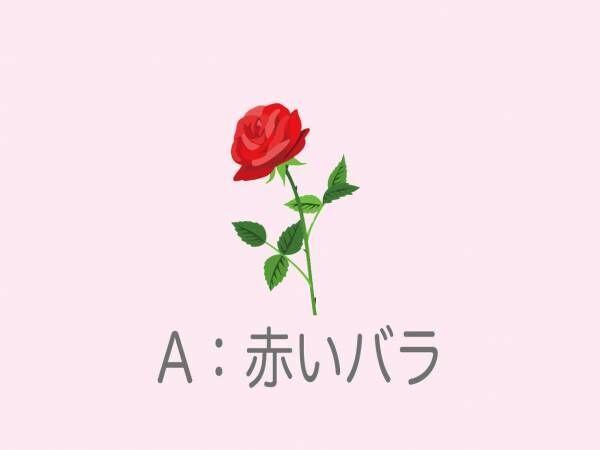 一輪もらうならどれ?選んだバラの色で「運命で結ばれた男性」を診断!