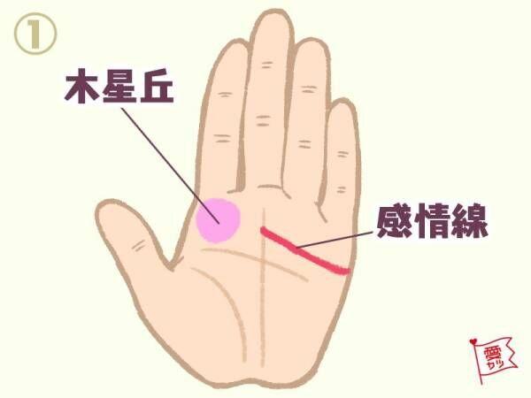 1.人差し指の下部