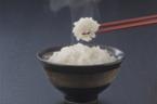 炊飯器のおすすめ7選!炊飯機能&保温機能の性能が高いものを厳選【2019年最新版】