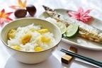 ちらし寿司の素のおすすめ10選!具材とこだわり条件で選ぶ