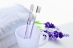 液体歯磨きのおすすめ8選!好みの香りと成分で選ぶ