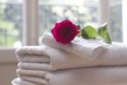 バスタオルのおすすめ8選!素材とデザインで選ぶ