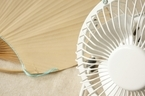 音が静かなDCモーター扇風機14選!節電・節約性で選ぶ 【2019年最新版】