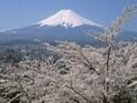 外国人が日本でやるべきこと パチンコ&富士山登山