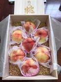 大桃美代子 1個1万4000円の桃を食べ感激「至福の時~」