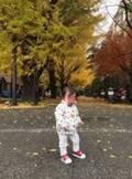 チャンカワイ 娘が東大のイチョウ並木をレポートした写真多数公開「癒されてます」