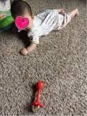 飯田圭織、ずりばいを始めた娘「ものすごく可愛さが増してくる時期」