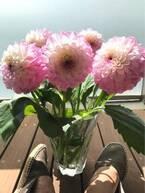 稲垣吾郎、色とりどりの花を前に幸せな悩み「花瓶がいくつあっても足りない」