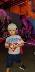 小原正子、朝から息子とケンカし「しばらく 泣きました」