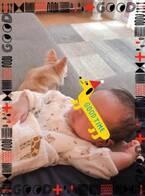 """本田朋子アナ、""""魔の3週目""""を迎える「息子が寝るのが先か、私が風邪引くのが先か」"""