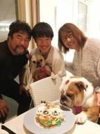 北斗晶、愛犬1歳の誕生日を祝う「見た目の貫禄が凄い」