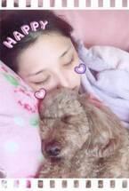 石川梨華が愛犬と一緒にお昼寝する写真が可愛いすぎると評判