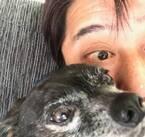 """坂上忍、愛犬・サンタに""""もっと甘えて""""と感じること「よっぽど、我慢してたのかな」"""