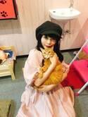 中川翔子、美人すぎるネコ発見「鼻が高くて目が大きくて、ネコ版佐々木希ちゃん!」