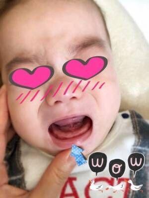 保田圭、息子の歯が生えてきたことを報告「成長においつけてない」