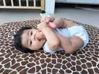 モデル・鈴木サチ、次男が5か月を迎え「親バカしてます」