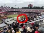 """アグネス・チャン、スタンフォード大学卒業式の""""名物""""を公開「三男も友達と変装しました」"""
