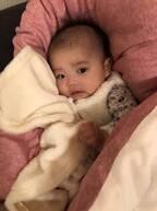 大渕愛子弁護士、思わず声をあげた娘の写真に「可愛い」「癒されます」の声
