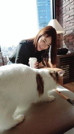 """細川直美、猫カフェでの""""幸せな1日""""を明かし「幸せそう」「優しさが溢れてます」の声"""