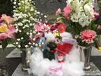 ダンカン、息子と亡き妻の墓参りを報告「今年もいろいろあったけどさ・・」