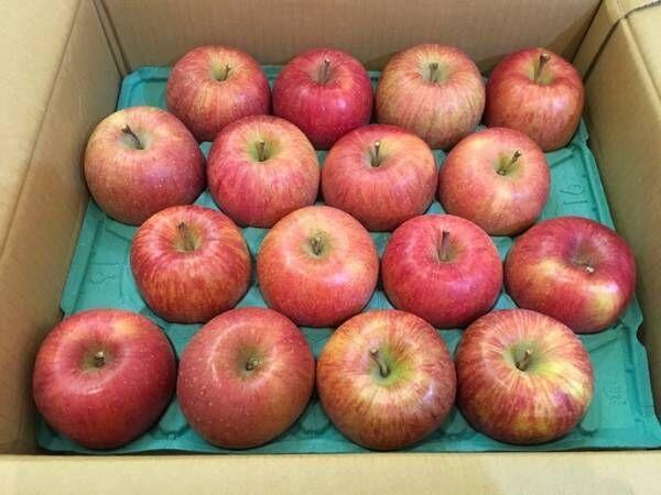 藤あや子、吉幾三から貰ったフルーツ「めちゃくちゃ美味しい」