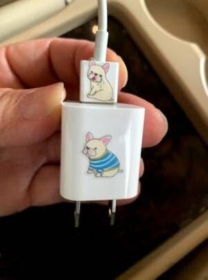 北斗晶、充電器にシールを貼った理由に「いいアイデア」「一目瞭然」の声