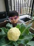 加藤貴子、長男の手術終了を報告「立派だと思いました」