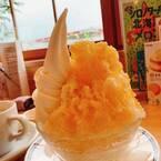 遼河はるひ、コメダで食べたかき氷を紹介「密かにマイブームだった」