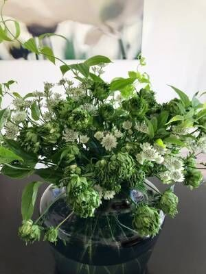 稲垣吾郎、好きな花を使ったアレンジメントを紹介「珍しい緑色の薔薇を」
