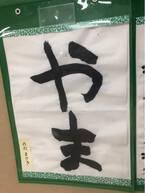 野田聖子氏、息子の手術痕に言及「風呂上りのとき、つい見てしまう」