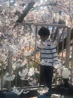 市川海老蔵、息子・勸玄くんの入学式で感動「様々なところで涙がツーっと」