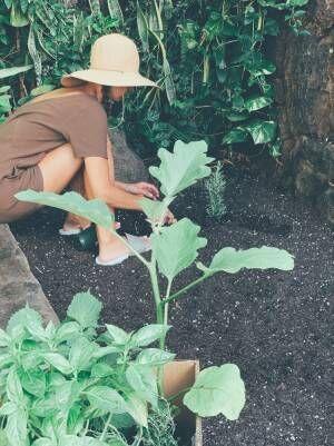 吉川ひなの、子どもと自宅の花壇で作業「とってもいい時間」