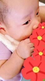小原正子、授乳中の娘の姿にメロメロ「胸が 猛烈に高鳴るーー!!!」