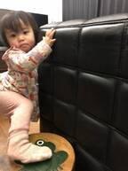 大渕愛子弁護士、娘が寝る前にとるお気に入りの行動「可愛すぎる」「すごく楽しそう」の声