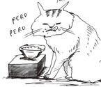 アイスクリームで中毒起こすことも 猫のNGフードとは?