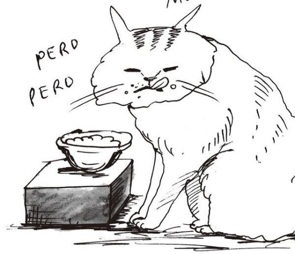 魚介類にも猫のNGフードはあるので、気を付けたいところ。