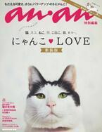 anan「にゃんこLOVE」猫特集の新装版が発売!
