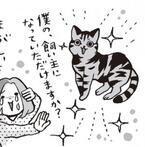 猫を選ぶときは目とお尻まわりをチェック! その理由とは