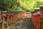 水占みくじはいかが? 京都でパワーチャージする旅♪