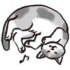 「ミァーォウ」はお願いの合図 猫の鳴き声を翻訳してみた!