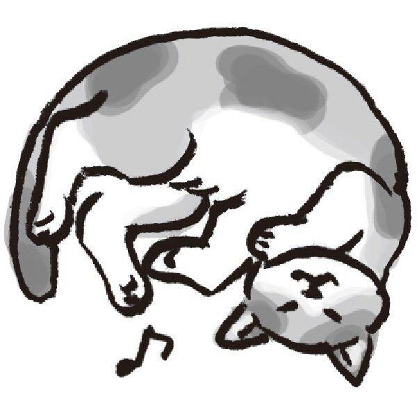 「ゴロゴロゴロ」と鳴く猫。一緒に遊ぶなら、このタイミングで。