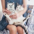 グッズに3時間待ち! 米で大人気のキャラ猫はイラつく顔?